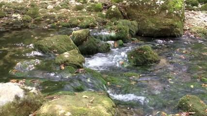 Журчащий горный ручей