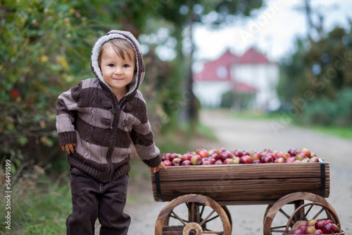 Boy with a trolley full of apples