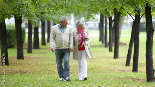 Romantic seniors