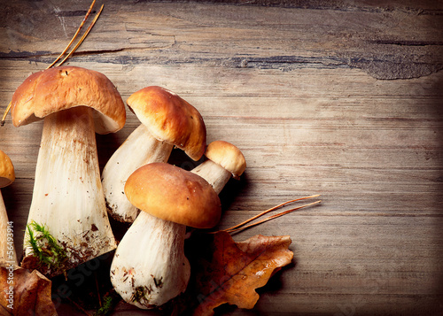Leinwanddruck Bild Mushroom Boletus over Wooden Background. Autumn Cep Mushrooms