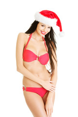 Sexy santa helper in bikini