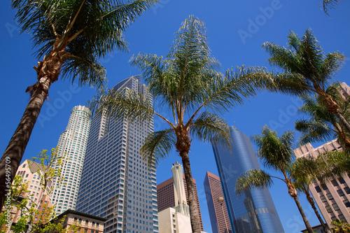 Fototapeta LA Downtown Los Angeles Pershing Square palm tress