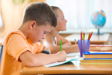 Clever schoolboy studying in classroom