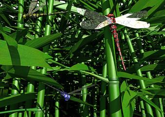 Bambuswald mit Libellen