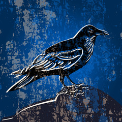 Vector grunge background with crow