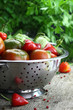 Vintage moody background with vegetables in colander