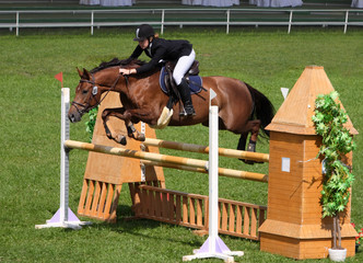Equestrian sport: show jumping