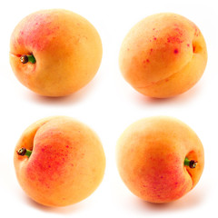 Apricots. Collection isolated on white background