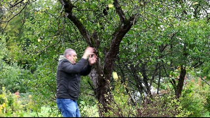 Man try cast off apple in garden episode 1
