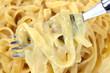 Fettuccine Alfredo Pasta Fork Close