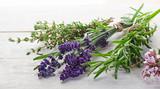 Herbs - 56515133