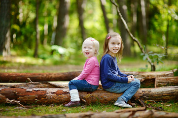 Two little sisters sitting on a big log
