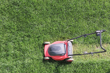 Grass cutter at the lawn