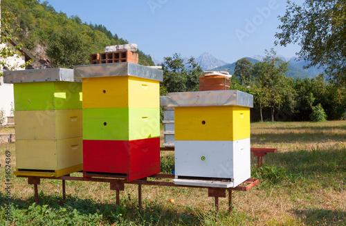 Multi-colored bee hive