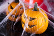 Scary Jack, halloween pumpkin and spider