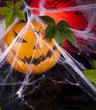 Halloween pumpkin Jack, spider web