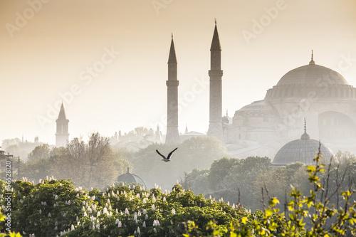 Papiers peints Turkey Sultanahmet Camii / Blue Mosque, Istanbul, Turkey