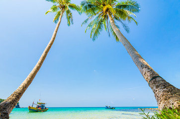 Tilted coconut trees by the beach with the boat and blue sky, Na