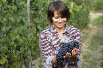 Closeup of woman in vineyard during harvest season