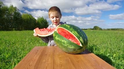 Smiling little boy eating watermelon outdoors