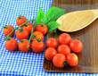 tomato on fabric