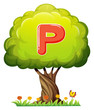 A tree with a letter P