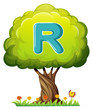A tree with a letter R