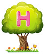 A tree with a letter H