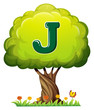 A tree with a letter J