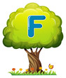 A tree with a letter F