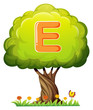 A tree with a letter E