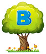 A tree with a letter B