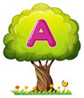 A tree with a letter A