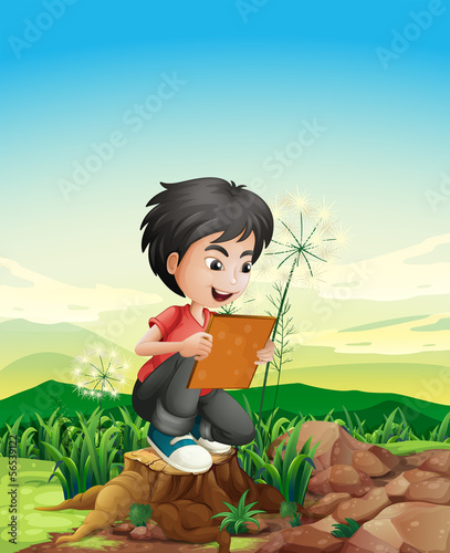 A boy above a stump holding a picture frame