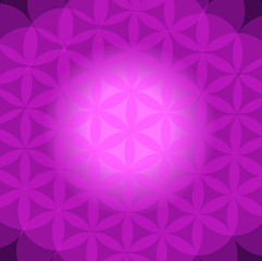 abstract vector mandala background