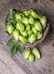 fresh hop cones in a basket