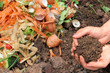 Leinwanddruck Bild - Kompostierte Erde, Komposthaufen, compost