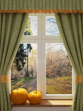 Window with pumpkins a beautiful view - 56544310