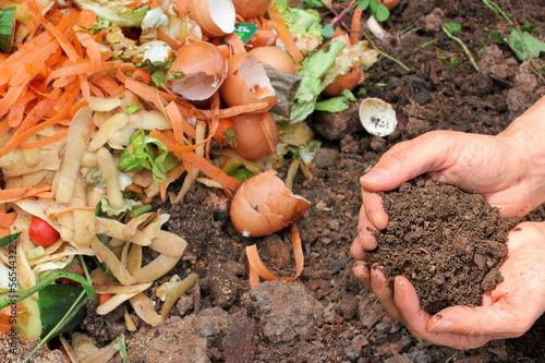 Leinwanddruck Bild Kompostierte Erde, Komposthaufen, compost