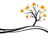 Silhouette Herbst Baum