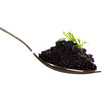 Black caviar in a spoon isolated on white background