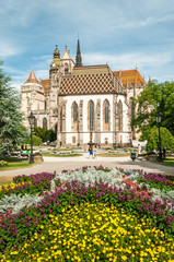 Cathedral of St. Elizabeth with garden