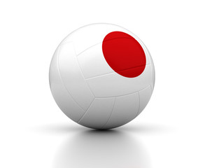 Japanese Volleyball Team