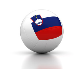 Slovenian Volleyball Team