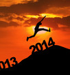 2014 Silhouette Jump New Year