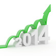year 2014 growth