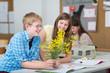 Schüler untersuchen Pflanze im Bio-Unterricht