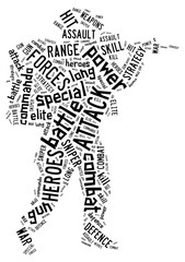 soldier info word cloud concept.