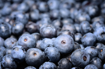 Ripe blueberries in the market