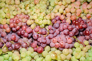 Wine grapes in market